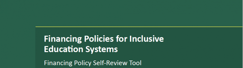 cover of FPIES Self-Review Tool