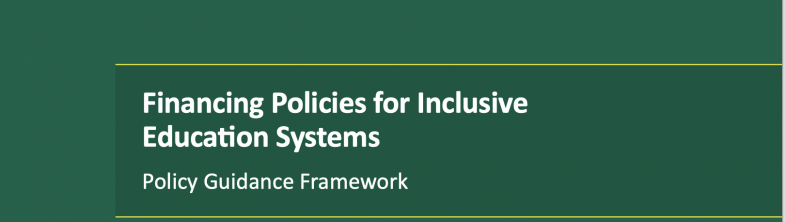 cover of the FPIES Policy Guidance Framework