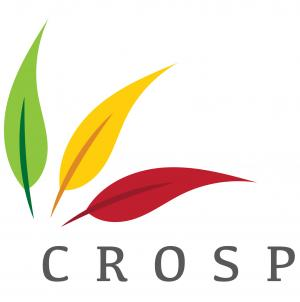 Changing Role of Specialist Provision (CROSP) logo